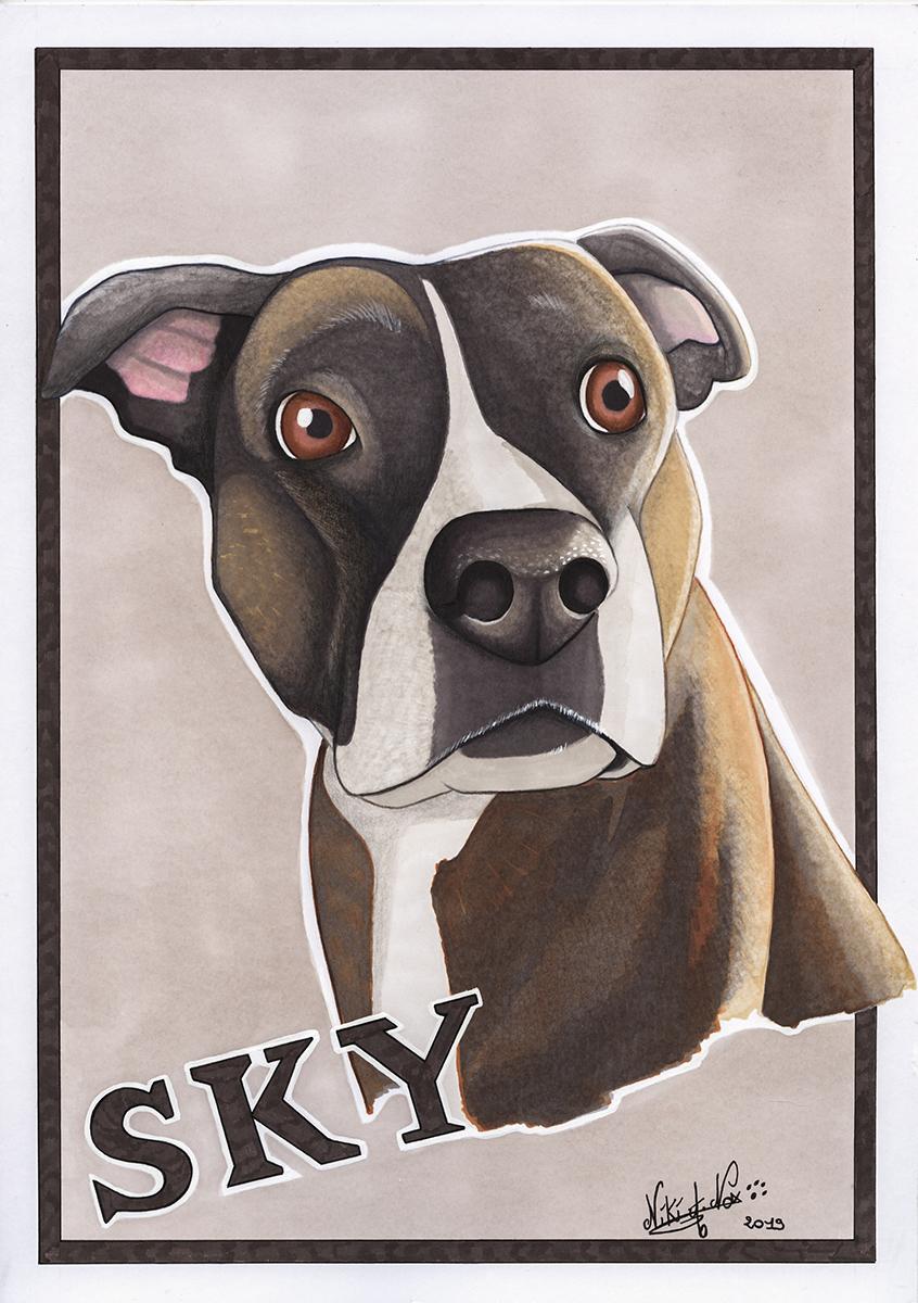 <b>SKY : </b><br />Portait réalisé au promarkers et crayon de couleur de Sky, un American Staffordshire Terrier <br>Logiciel: ''Clip Paint Studio'' <br>Mai 2019                        <br />